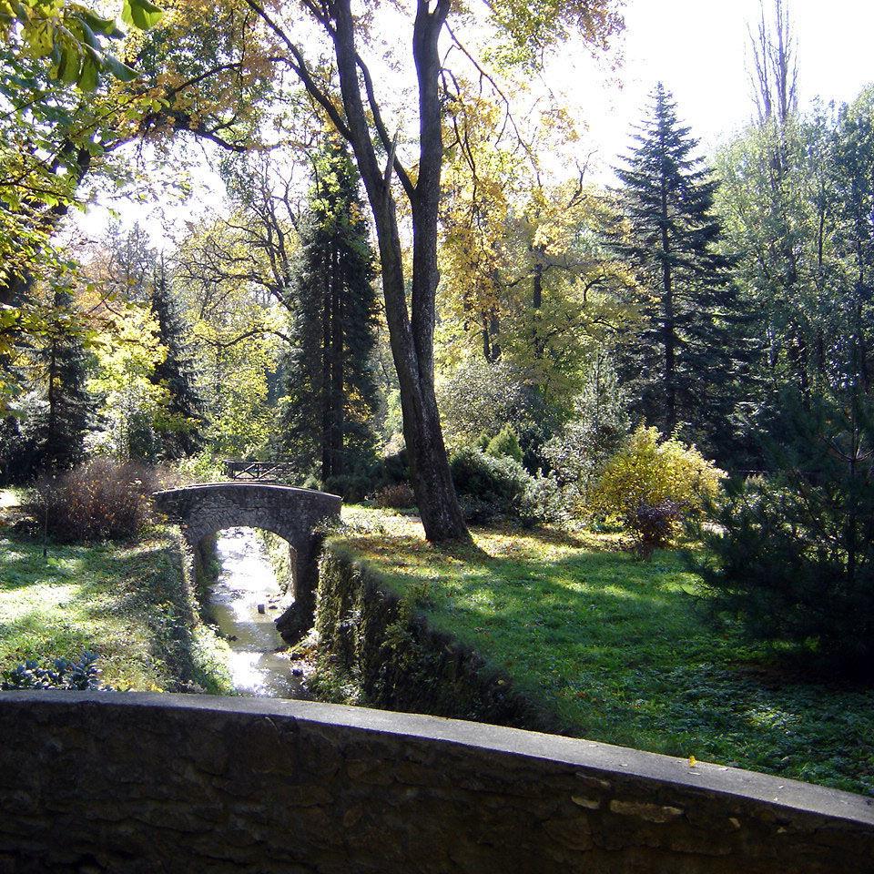 Zirci Arborétum, Zirc